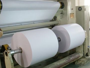 FOCUS Brand Thermal Paper Jumbo Roll—Blue Image